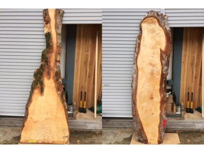 木材の買い付け